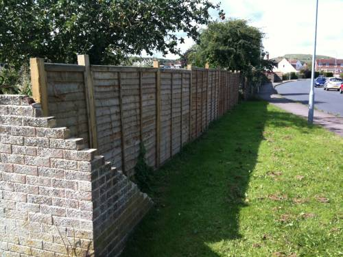 Fencing along the back of the plot